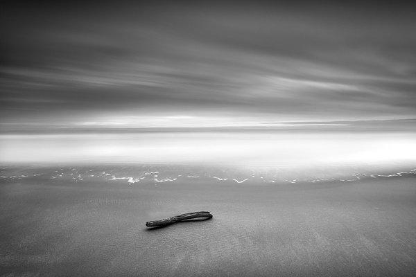 Фотограф Стив Ландерос
