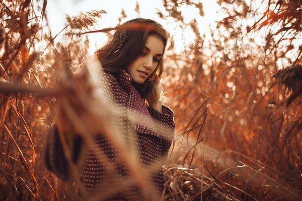 Женские портреты Дмитрия Тришина