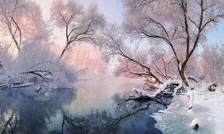 Фотоконкурс«Зимний пейзаж»