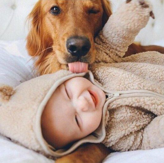 Уровень доброты на этом фото - просто зашкаливает..!!! :))