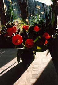 flowerh0304