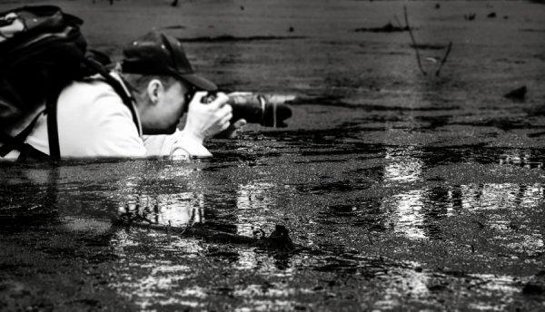 Профессиональный фотограф - Автор фото: Джо Мели