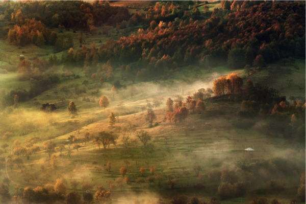 утренний пейзаж картины
