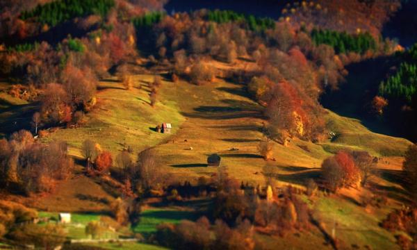 утренний пейзаж фото