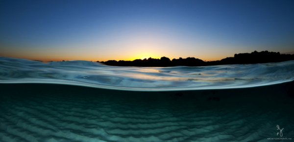 фото морских жителей 15