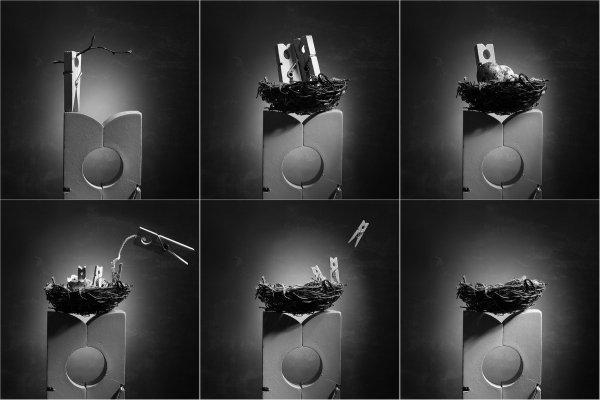 «Гнездо». Автор: Виктория Иванова