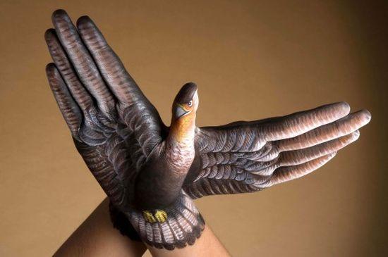 Фото животных из рук 19