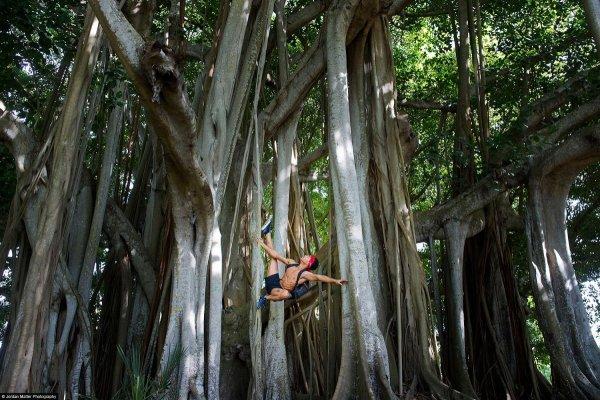 Ricardo_Rhodes_Sarasota_Dancers_Among_Us