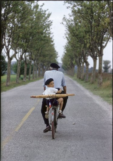 Эллиотт Эрвитт. Провинция, Франция, 1955.