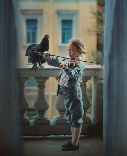 Черная курица. Автор фото: Надежда Шибина