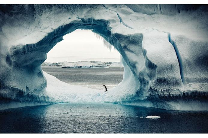 Фото Антарктиды 7 – Фотограф Алекс Бернаскони