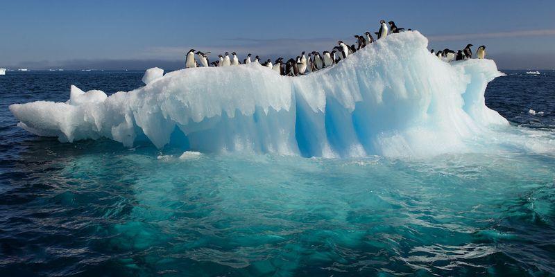Фото Антарктиды 23