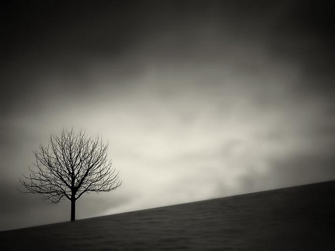 Фотограф Филипп Маккей - №13