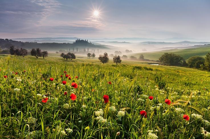 Пейзажи от Даниэль Рерич - №8