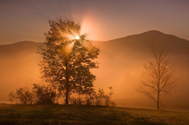 Пейзажи от Даниэль Рерич - №16