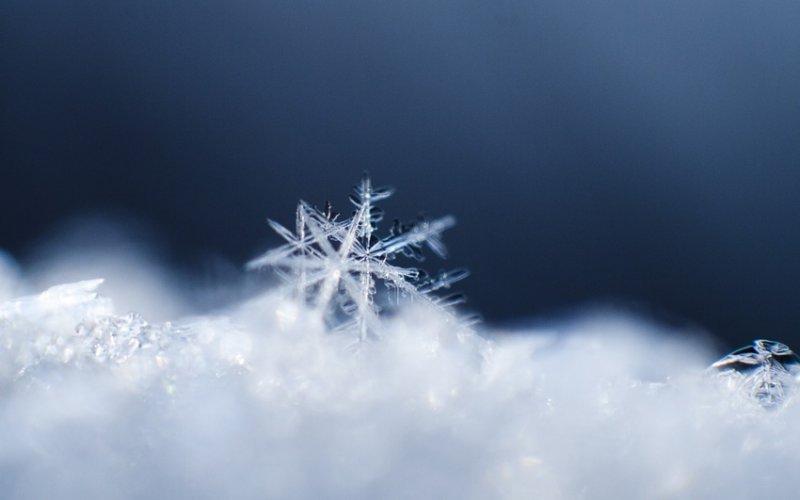 идеи для зимней фотосессии