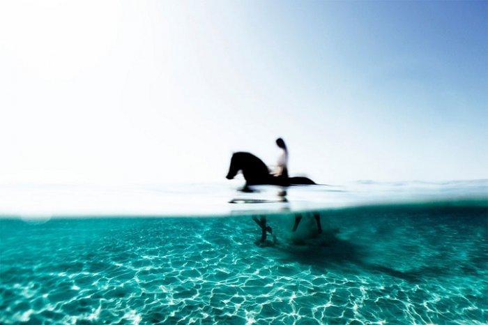 Подводная красота Энрика Адриана Генера - №6