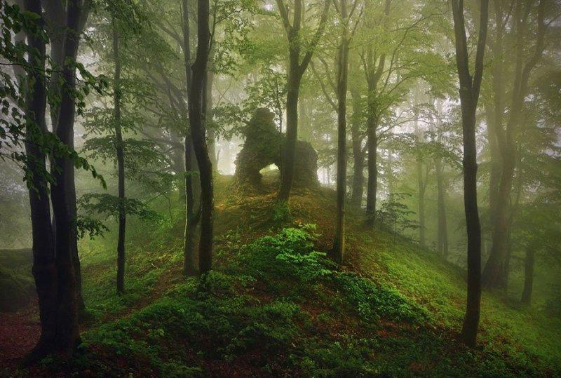 Сказки братьев Гримм в фотографиях Киллиана Шенбергера - №7