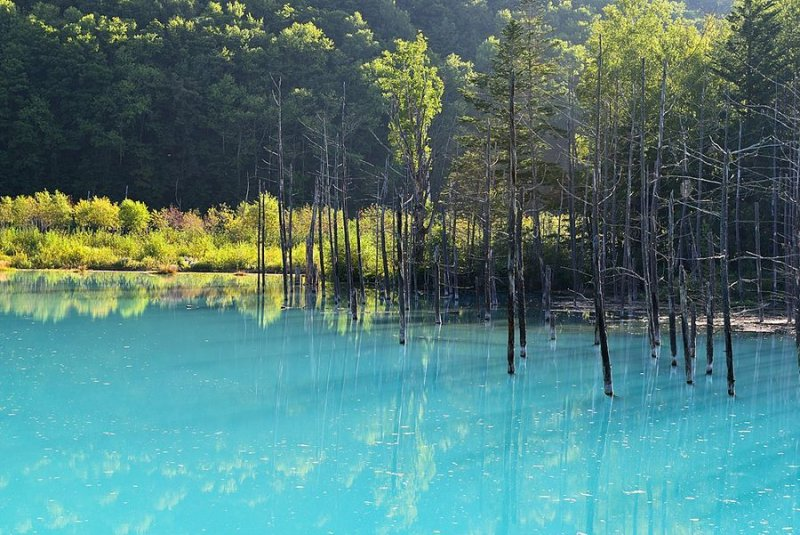 Ландшафтная сказка в фотографиях Кента Шираиши - №3