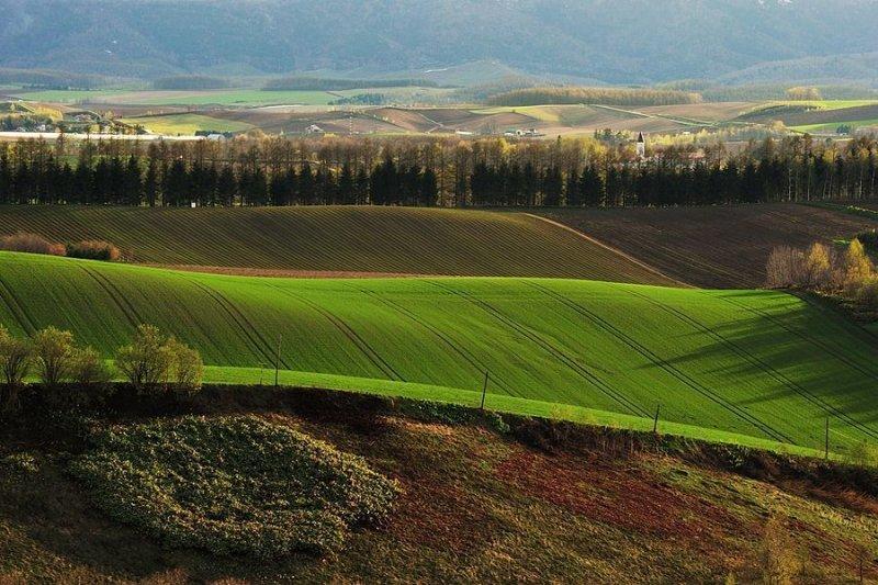 Ландшафтная сказка в фотографиях Кента Шираиши - №8