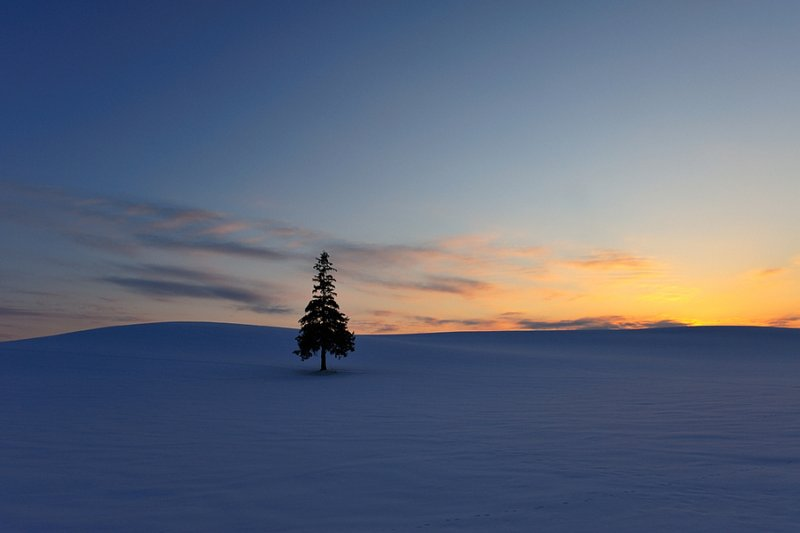 Ландшафтная сказка в фотографиях Кента Шираиши - №19