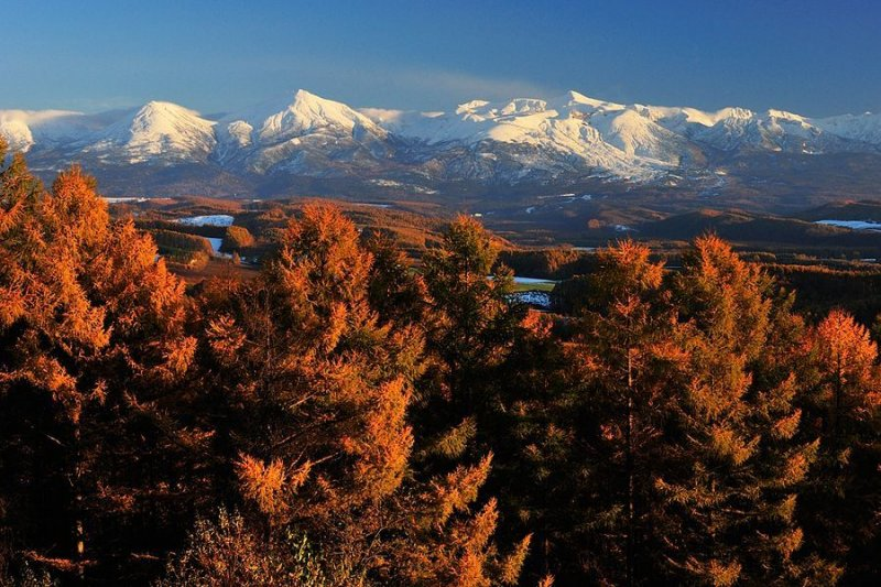 Ландшафтная сказка в фотографиях Кента Шираиши - №14