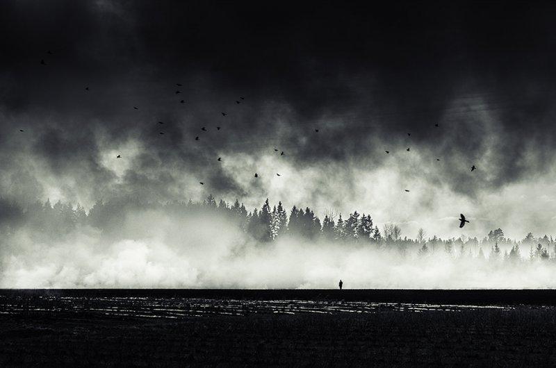 Финские пейзажи Микко Лагерстедта - №2