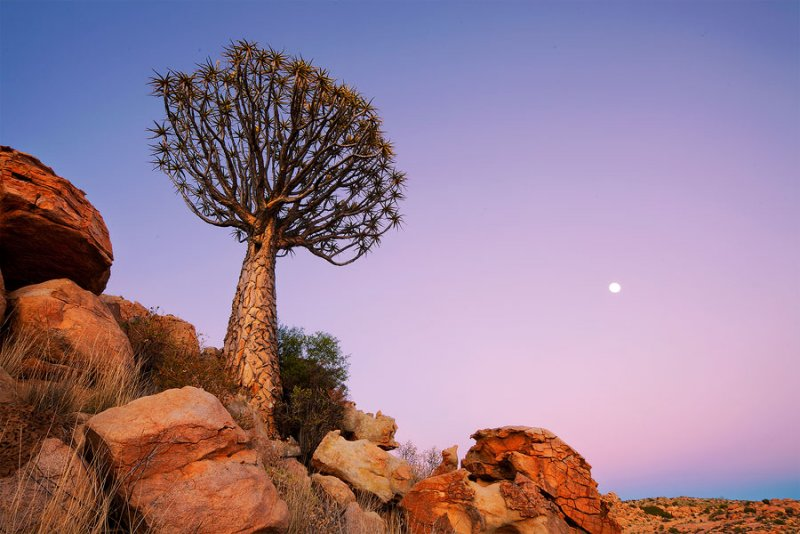 Фантастическая Намибия в объективе Хоугарда Малана - №4