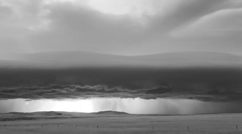 Черно-белые бури Митча Добраунера - №7