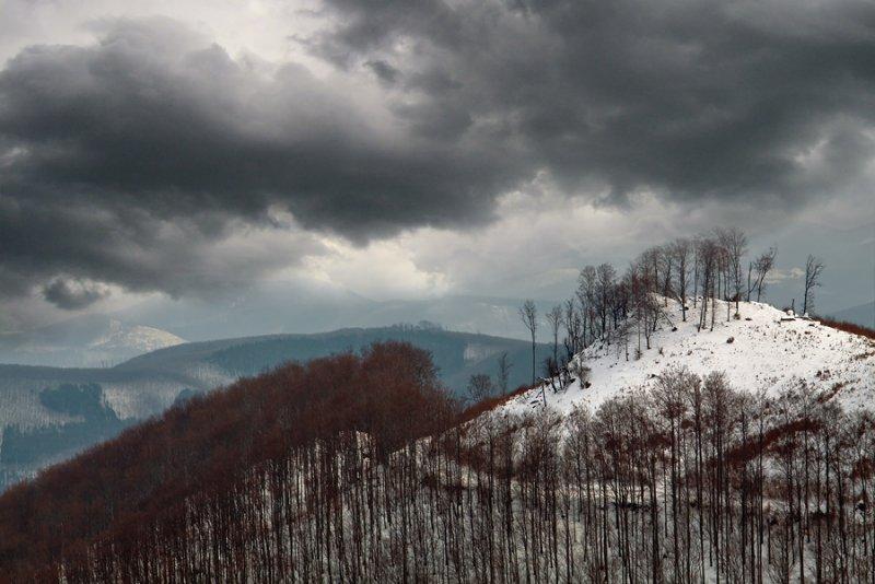 Адам Добровиц и его удивительные пейзажи - №40