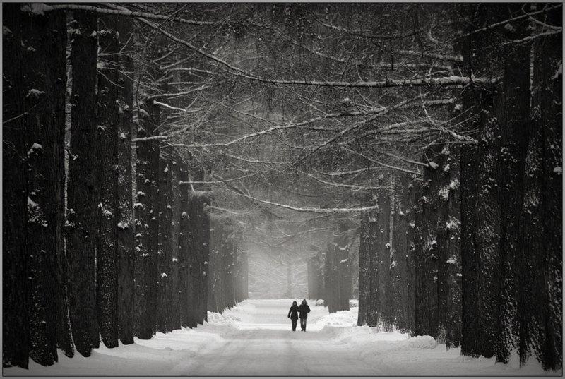 Черно-белое спокойствие симметрии Кая Зиля - №4