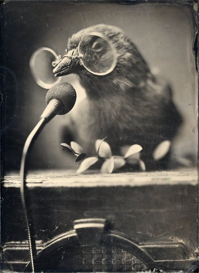 Амбротипия. Удивительные фотографии Миши Бурлацкого. - №16
