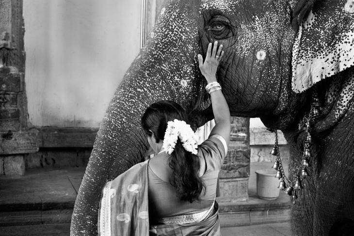 Лаура Саффиоти: Исследуя мир через фотографию - №26