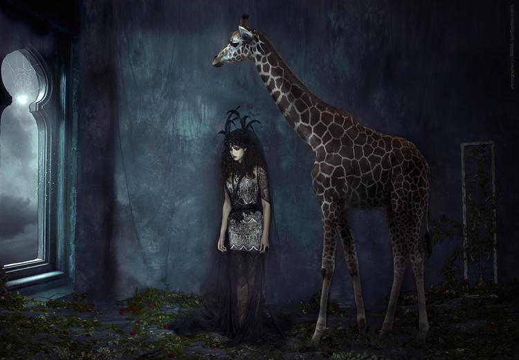 Lori Cicchini - №2