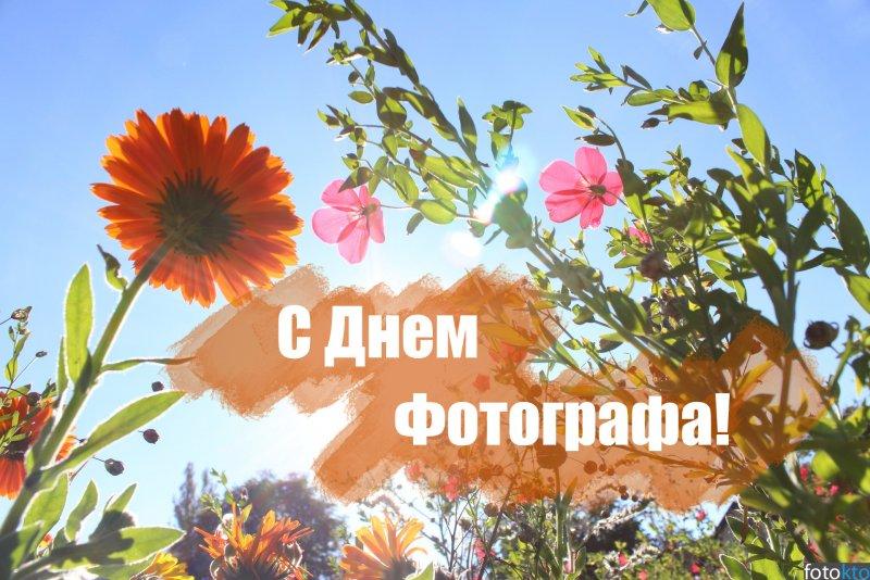 С днем Фотографа!