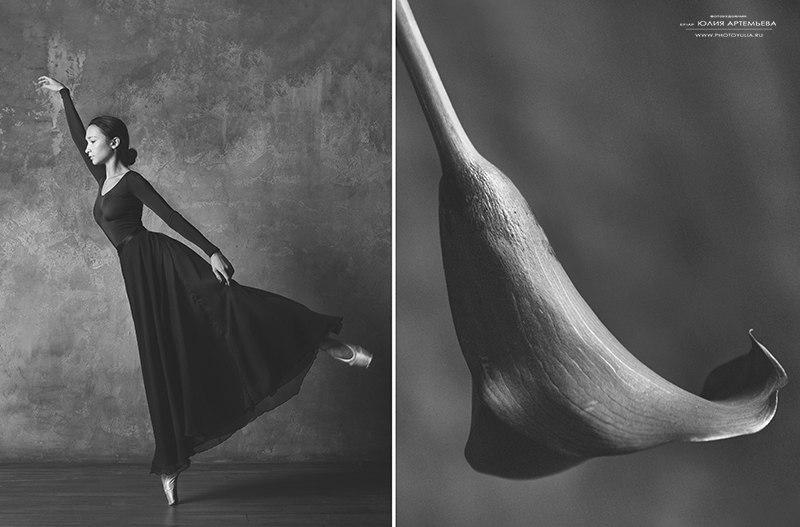 Цветы и балерина - №7