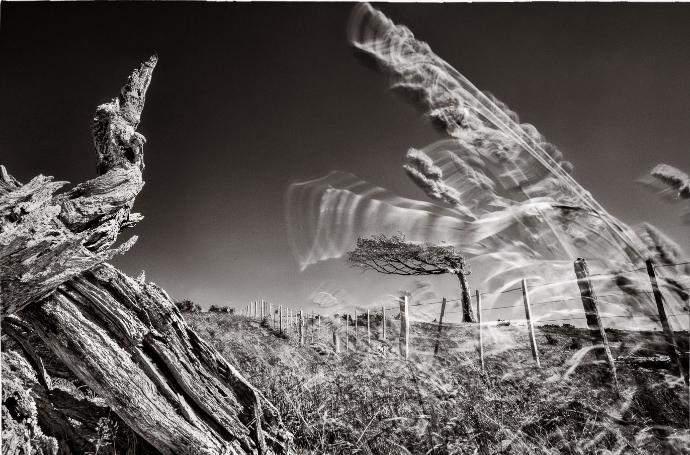 Фотограф Eliseo Miciu - №15