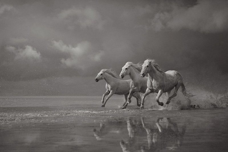 Фотограф Дрю Доггетт - №3