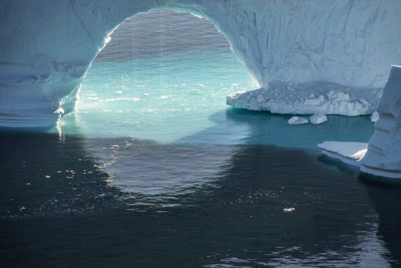 Арктика в фотографиях Дайан Тафт - №9