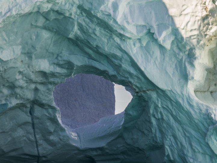 Арктика в фотографиях Дайан Тафт - №14