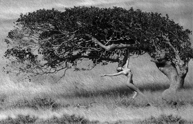Марко Главиано – легенда мира фотографии - №13