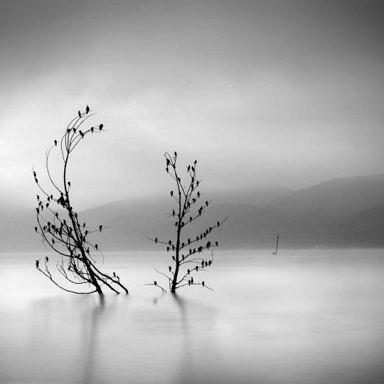 Фотограф Джордж Дигалакис - №15