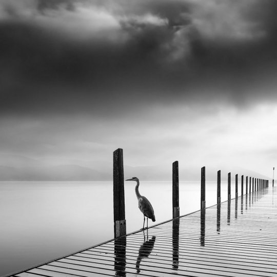 Фотограф Джордж Дигалакис - №19