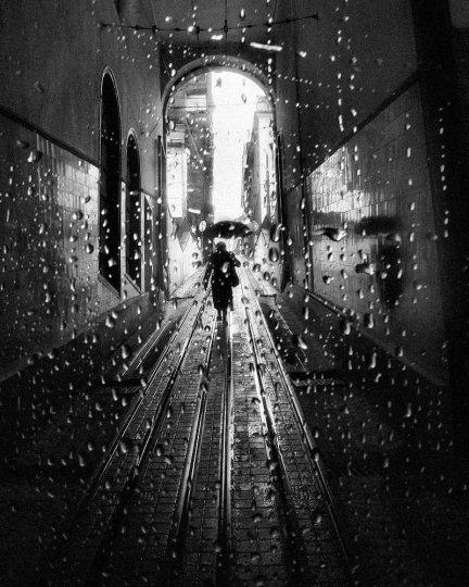 Фотограф Руи Палья - №14