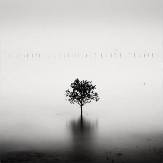 Фотограф Йозеф Хофленер - №18