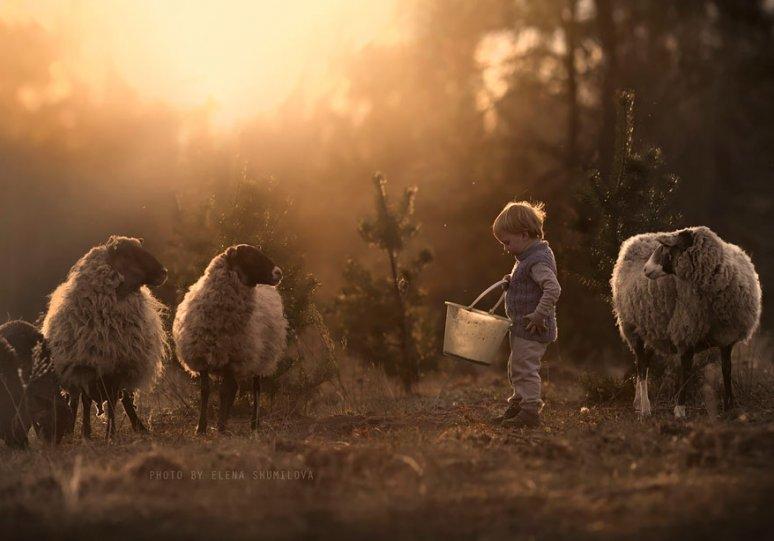 Фотограф Елена Шумилова - №9