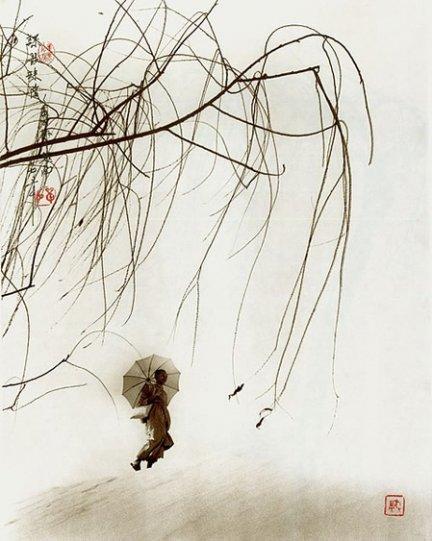 Фотограф Дон Хонг-Оай - №20