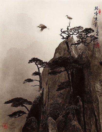 Фотограф Дон Хонг-Оай - №22