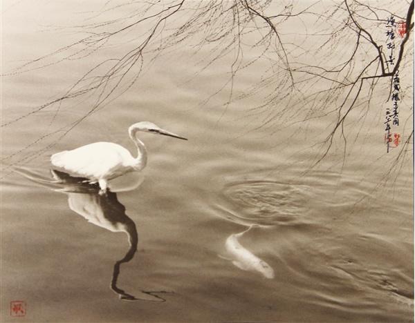 Фотограф Дон Хонг-Оай - №12