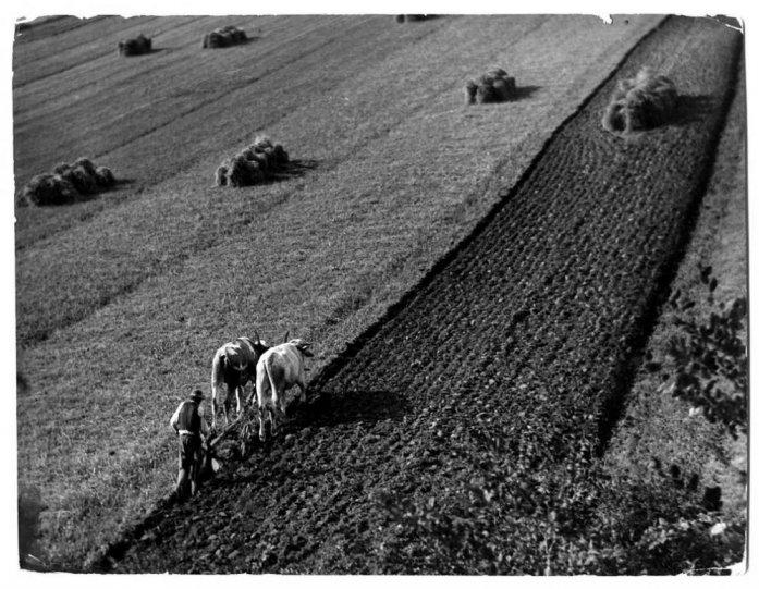 Фотограф  Эрнё Вадаш - №19